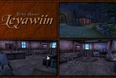 Torins Häuser - Leyawiin
