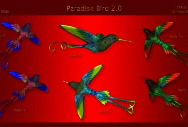 Paradise Bird 2.0