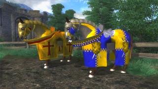 Ziras Medieval Horse Clothes DV