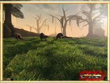 RPG-BlackDragons Morrowind-Grass-Resource 2.0