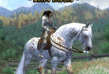 Ziras Horse Compilation Modpack DV