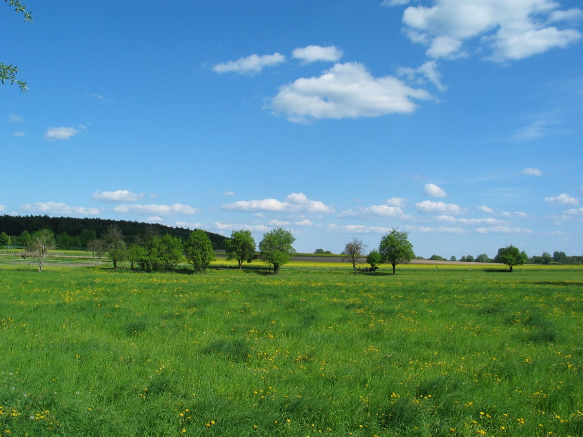 Landschafts-Panorama in Brandenburg